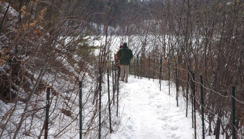 Begin the new year outdoors with one of these 12 First Day Hikes