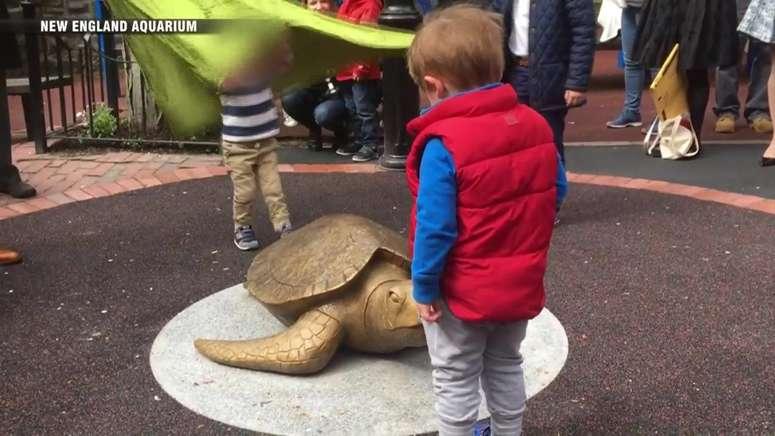 Parents say bronze turtle sculpture at Boston playground is burning children