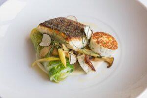 mooncusser boston seafood